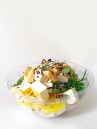 Organic Tofu Poke Bowl